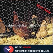 Chicken Coop verzinktem Drahtgeflecht