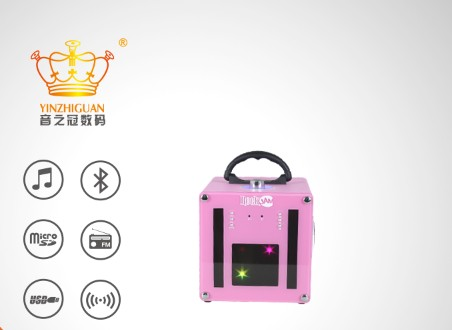 Lastest Pink Multimedia Portable Speaker