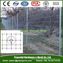 L'élevage en fil métallique noué et la clôture agricole