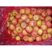 Manzanas frescas dulces de FUJI