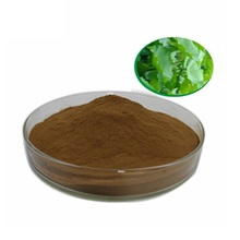 Healthy Supplements lotus leaf extract lotus leaf powder