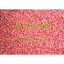 Export Chinese New Crop Good Quality Red Bean