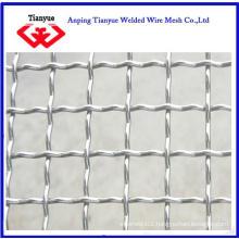 Galvanized Crimped Wire Mesh (TYB-0011)