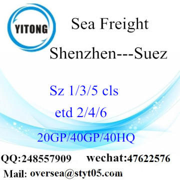 Shenzhen Port Sea Freight Shipping To Suez