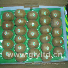 Chinese Fresh Kiwi Fruit for Sale