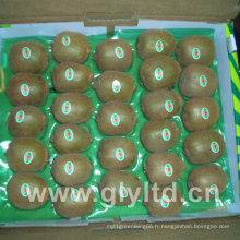 Fruit de kiwi frais chinois à vendre