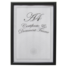 Low Cost  Plastic Document Frame