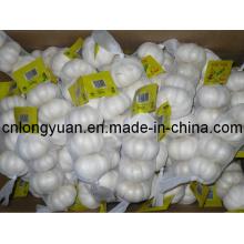 Golden Supplier Chinese Fresh Pure White Garlic