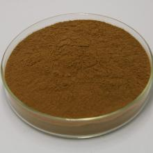 Honeysuckle extract Chlorogenic acid