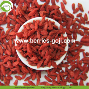 Nutrition Dried Rouge Organique Wolfberry