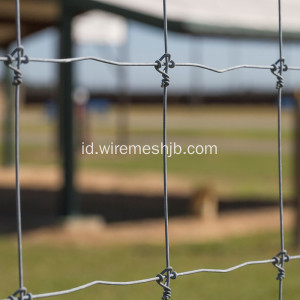 Hot-dip Galvanized Kraal Network Fence