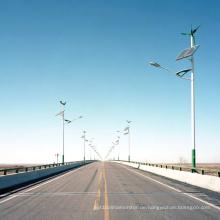 MPPT Wind- und Solar-Hybridregler (100W-600W)
