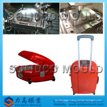 Plastic luggage case mould