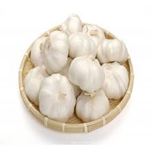 2017 novo tipo de colheita comprar china natural alho fresco puro branco alho preço