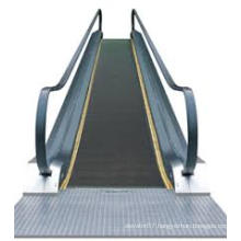 Moving Walk/ Passenger Conveyor /Moving Sidewalk of Japan Technology (FJ8000-24)