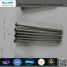 Hot Sale Q195 Common Nail Hardware