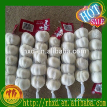 8/9/10kg mesh bag white garlic price china garlic price