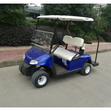 hot sale 2 seater small golf car