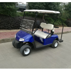 hot sale 2 seater small golf car with good price