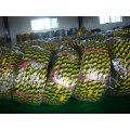 China Motorrad Reifen Großhandel in Venezuela (Fabrik)