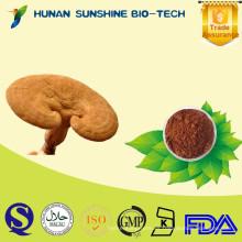 analgésico QS reishi mushroom product