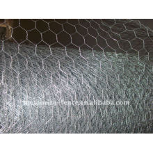 Hexagonal/Chicken Wire Netting(Galvanized)