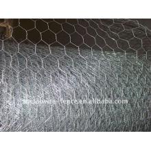 Hexagonal / rede de fio de galinha (galvanizado)