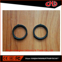 NT855 Rectangular Ring Seal 3024709