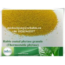 feed enzyme phytase 5000+ powder/granule/powder feed additive