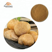 Provide edible and supplement Hericium erinaceus extract, Lion's mane extract or powder hot sale