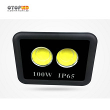 Outdoor Project First Choose 100W Outdoor Flood Light