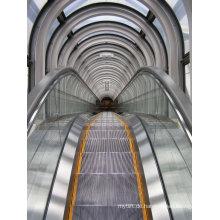 Aksen Rolltreppe Slim Type Aluminium Step Innen- & Außenausführung