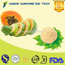 100% Natural Papaya Products / Papaya Powder for Food & Beverage