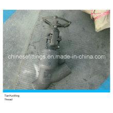 Cl1500 Forged A105n Y Válvula Globe Roscada / Roscada