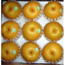 Dulce, jugoso, fresco, fengshui, pera, (36/40/44)