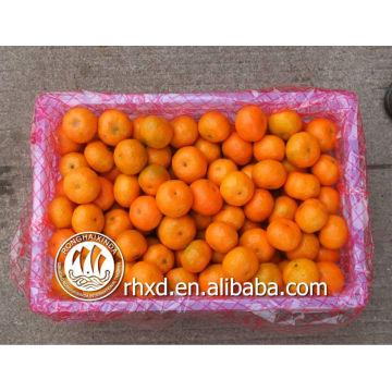 китайский цитрусовых фруктов (список желтый фрукты)