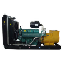 Gas Generator Set Output from 10 to 250kVA with 50Hz Frequency