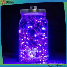 Christmas Bright Warm Purple Copper Wire LED Decoration Light