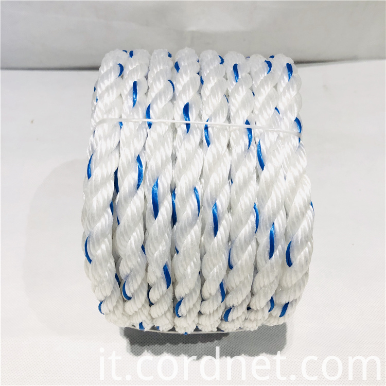 White With Blue Pp Multifilament Rope 2