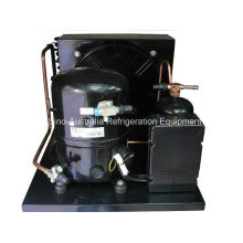 Tecumseh L ′unite Piston Hermetic Condensing Units for Cold Room (FH2480ZBR)