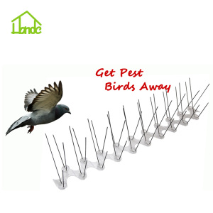 Anti-Roosting Spikes