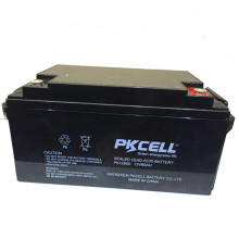 PKCELL ISO CE SGS UL ups inverter battery charger battery for 12v 65ah