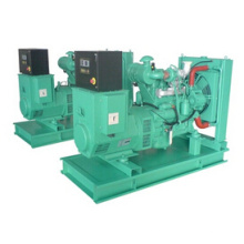 Гугол Двигатель: Дизель Электрический 20 кВт Молчком комплект генератора