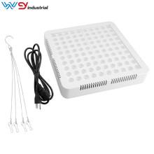 LED-Panel wachsen Licht 600w wenyi
