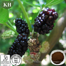 Mulberry Leaf Extract 1-Dnj (1-deoxynojirimycin) for Reducing Blood Glucose and Pressure