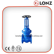 Stainless Steel F5 DIN Rising Stem Flanged Wedge Gate Valve