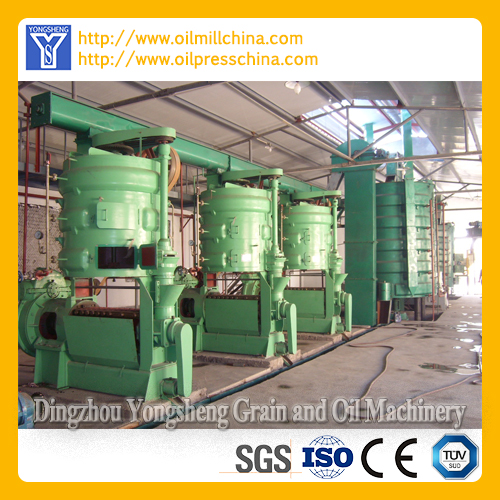 Oilseed Press Machine