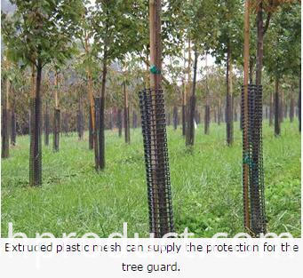 extruded plastic mesh can supply the tree