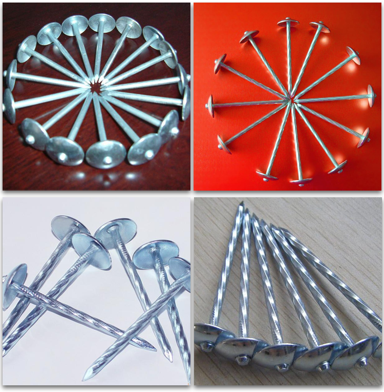common wire nails roofing nails galvanized