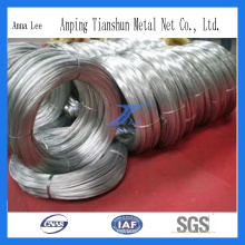 Electro Galvanized High Quality Wire